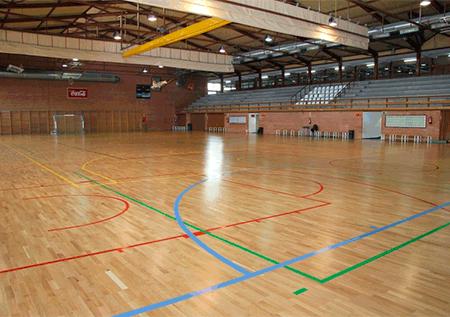 Polideportivo Dehesa de Navalcalcarbón